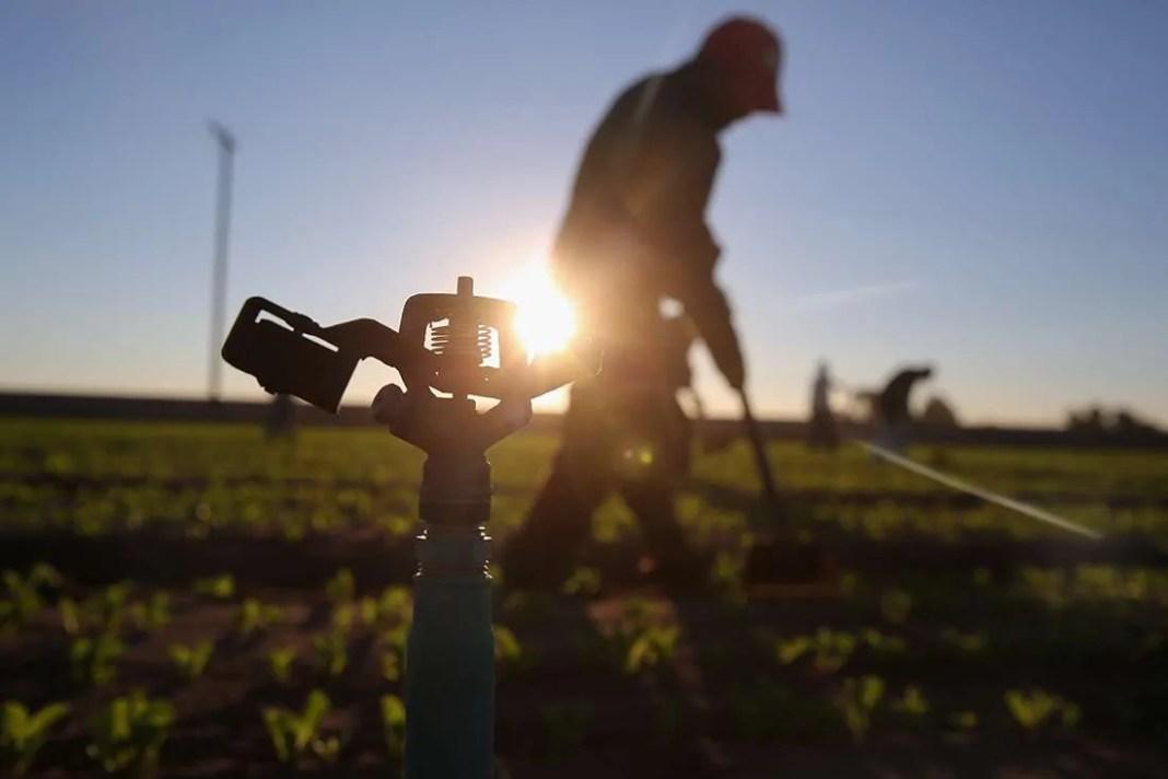 Pubblicazione elenchi lavoratori agricoli 2018 - prima variazione