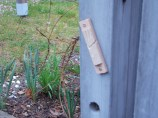 Not to miss this opportunity, Susan has placed a mezuzah at child-height at the picket fense entrance.