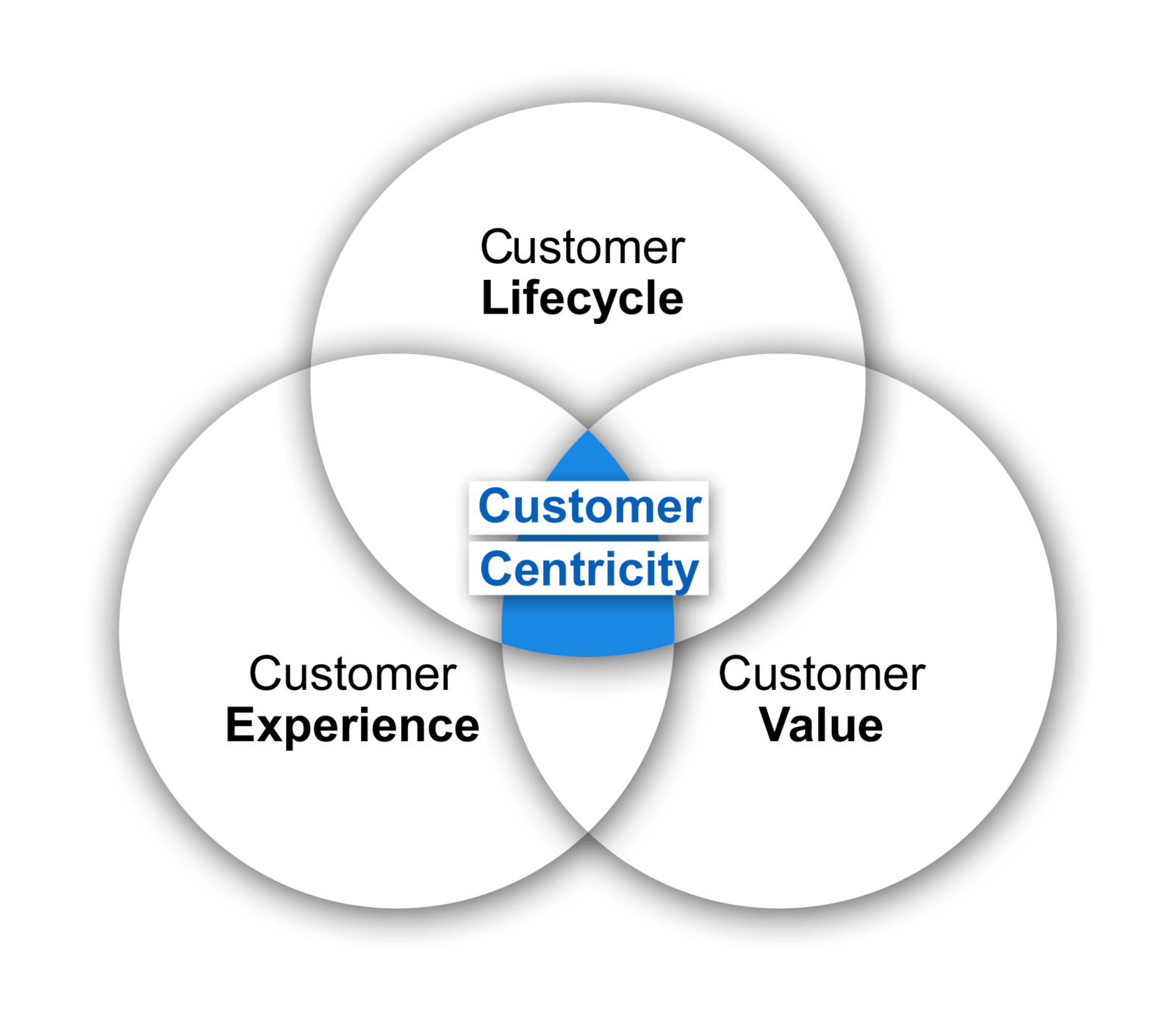 How Customer Centric Is Your Organisation Insites