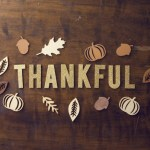 10 Reasons to Be Thankful You Work in Insurance