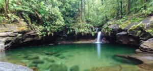 Bassin paradis, des bassins et cascades d'eau chaude en Guadeloupe