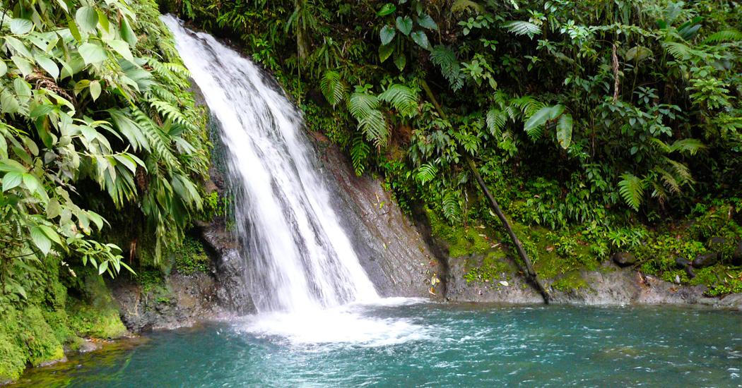 cascade-ecrevisse-riviere-insolite-bassin-caraibes-creole-guadeloupe-pique-nique-carbet-rando