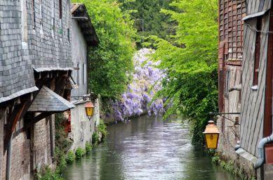 Le Clos de la Risle : canaux du vieux Pont-Audemer