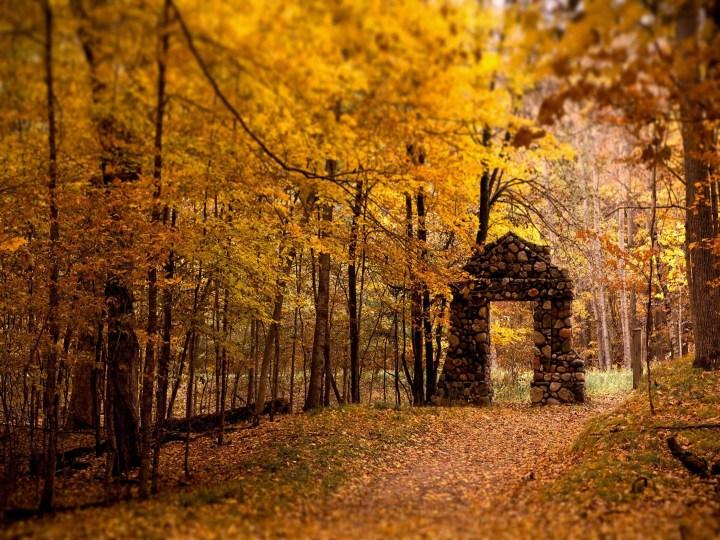 le Clos de la Risle : Parc Parissot - Beaumontel