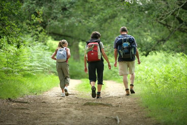 Le Clos de la Risle: Randonnée en forêt