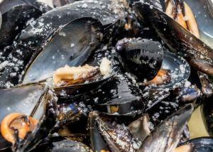mussels - mejillones tapas