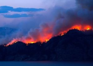 Severe forest fires in various parts of Spain