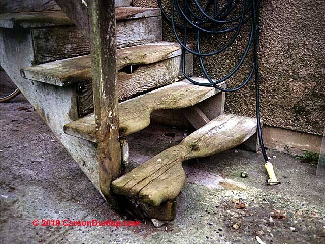 Stairway Tread Width Tread Nose Details For Stair Construction   Yellow Pine Stair Treads   Natural   Diy   White Pine   Distressed   Hemlock