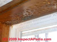 Moisture On Ceiling Drywall