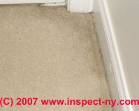 Carpet stains: How to Diagnose Indoor Carpeting & Rug ...