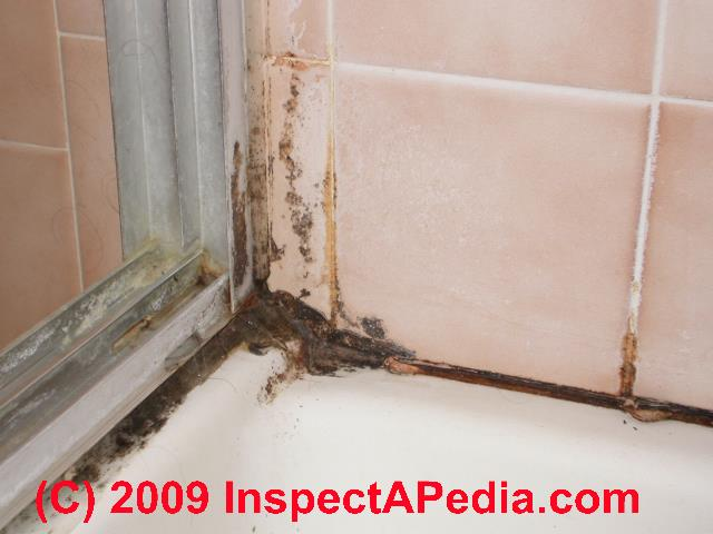 tile grout joints remove bathroom mold