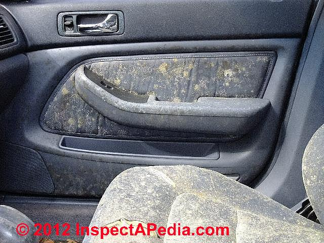 mold in car interior dangerous. Black Bedroom Furniture Sets. Home Design Ideas