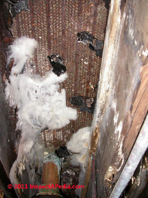 Mold on plaster ceilings  walls mold on plastic surfaces