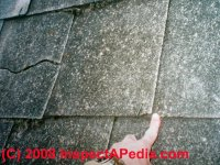 Roof Tiles Asbestos | Tile Design Ideas