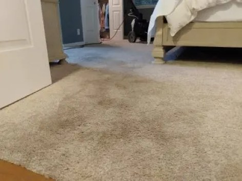 Carpet Cleaning Carmichael