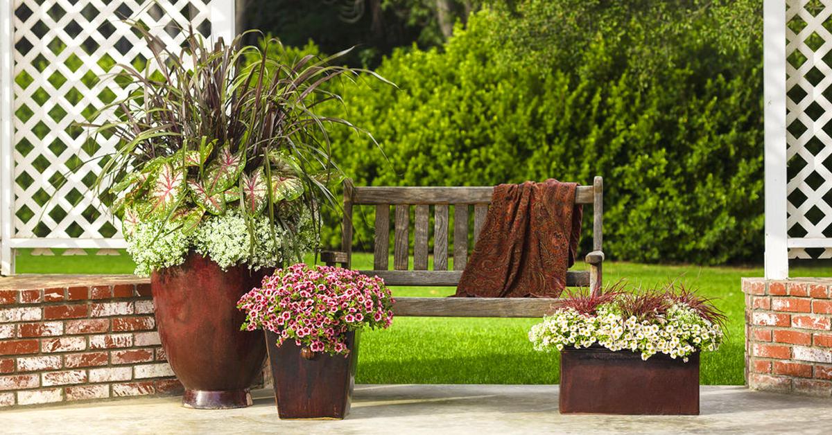 Garden and pots