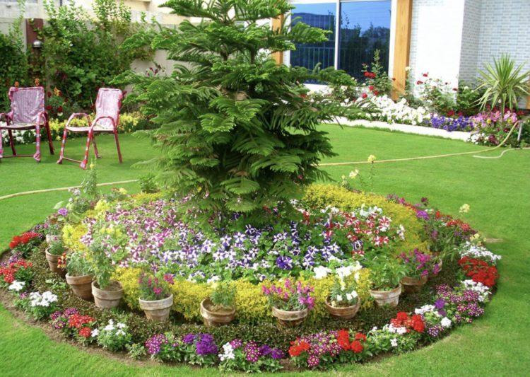 Home Garden Flower