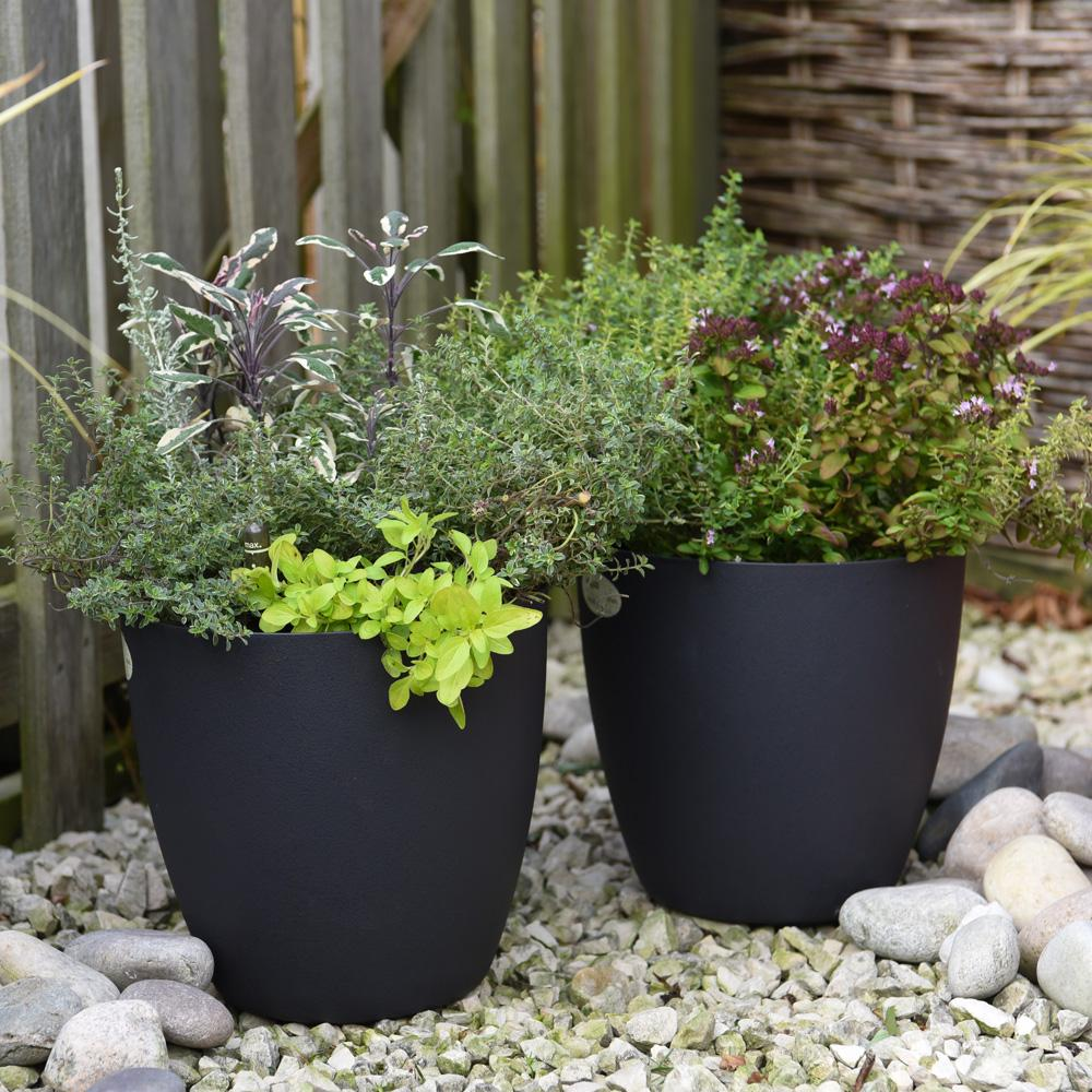 Simple Black Color Pots Design