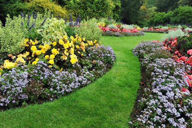flower bed inspiration