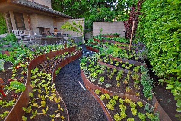 vegetable garden layout ideas