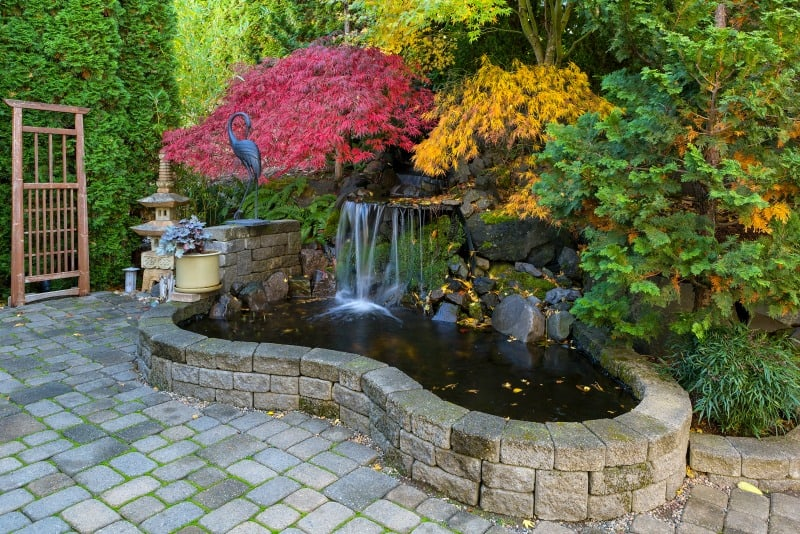 backyard waterfall and pond