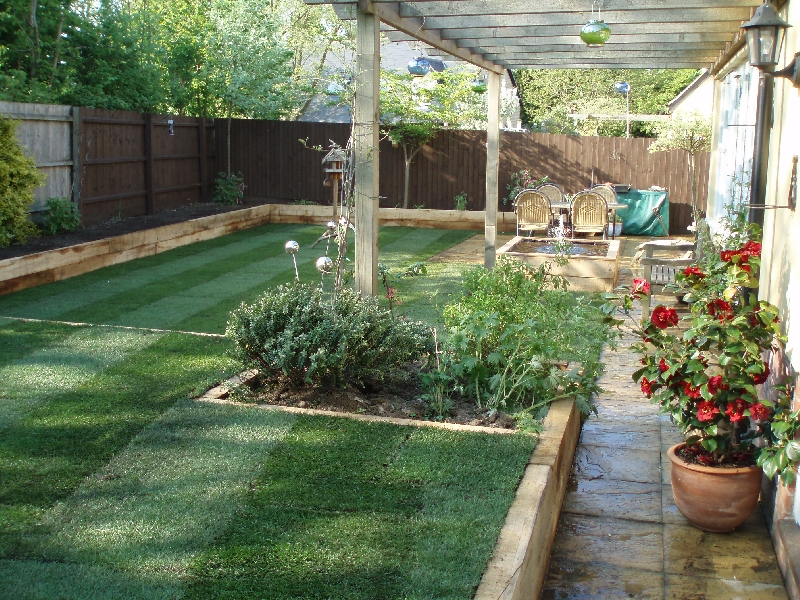 grass and patio