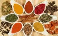 obat herbal diabet