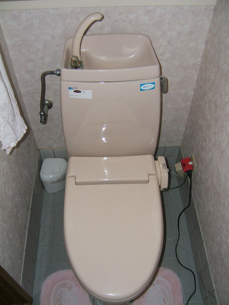 one piece toilet japanese style