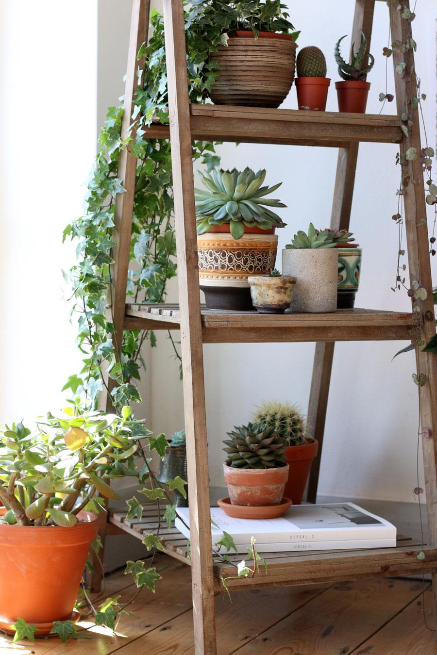 Rustic Decorative Ladder