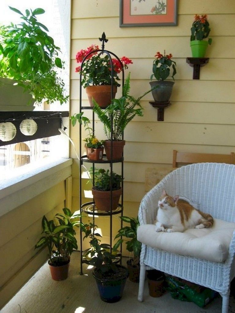 tiny balcony garden