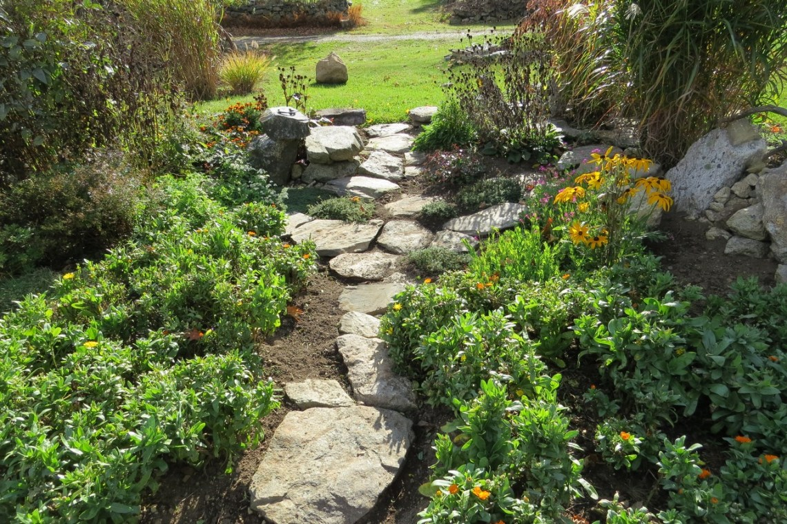 landscaping ideas texas