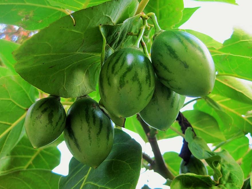 fruit streaked juicy food ripe healthy fresh diet vegetarian
