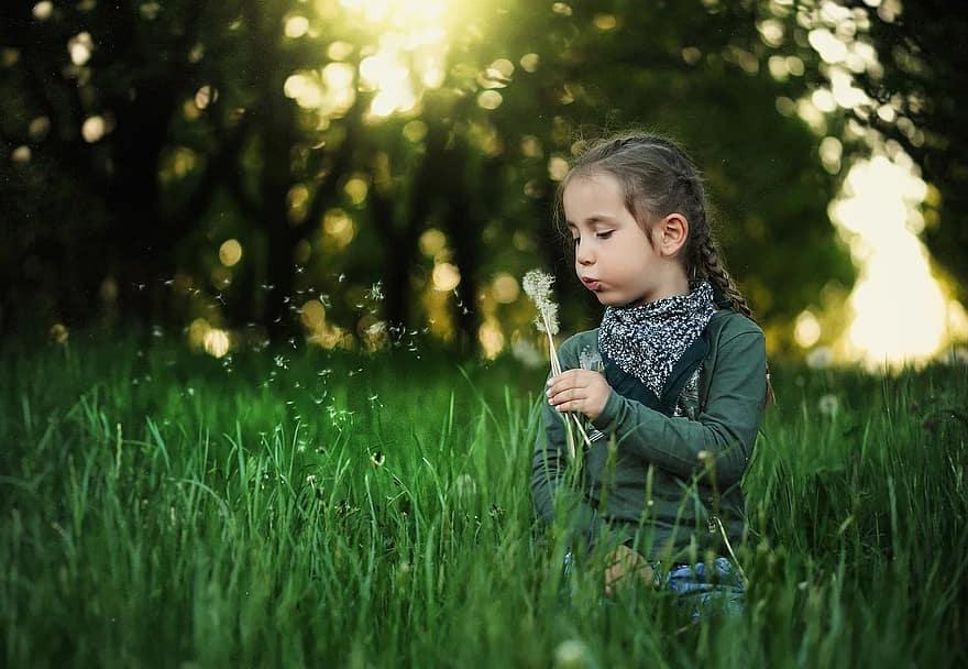 child dandelion kids spring nature grass summer girl cute