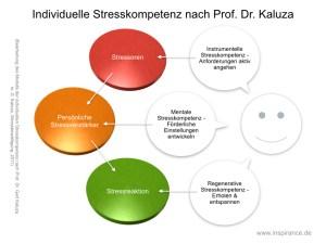 Modell der individuellen Stresskompetenz nach Kaluza in: G. Kaluza, Stressbewältigung, 2011 (Bearbeitung)