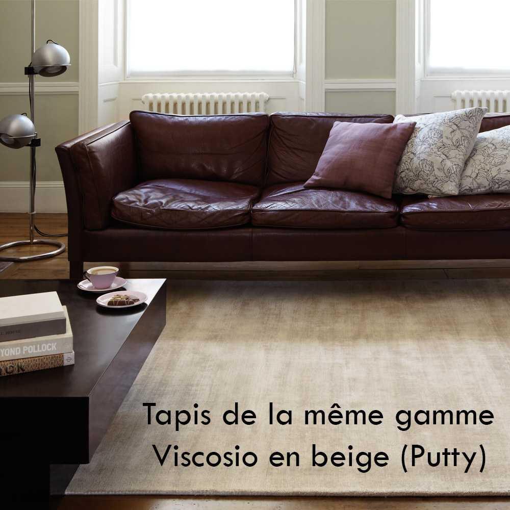 Tapis Moderne Fin En Viscose Violet Parme Avec Effets Silky