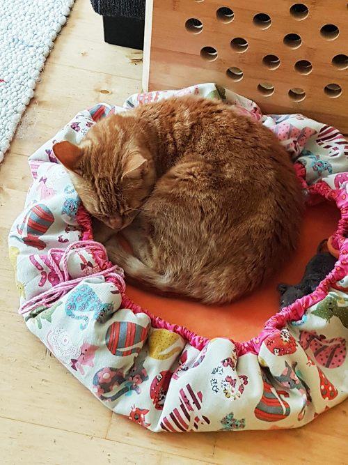 Nestchen für kleine Hunde und Katzen nähen mit Hugo to go von farbenmix