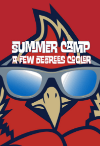 Team Carolina Lacrosse Summer Camps