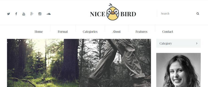 nice-bird-wp-theme