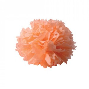 Boule crépon corail
