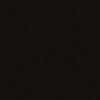 Papicolor original noir