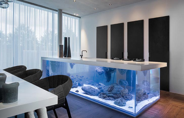 La cuisine aquarium de Robert Kolenik  Inspiration cuisine