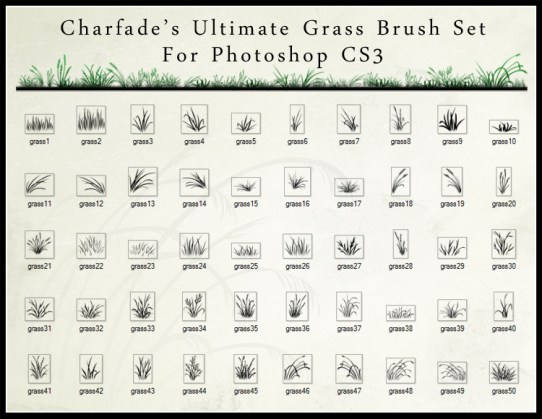 Grass Brush Set