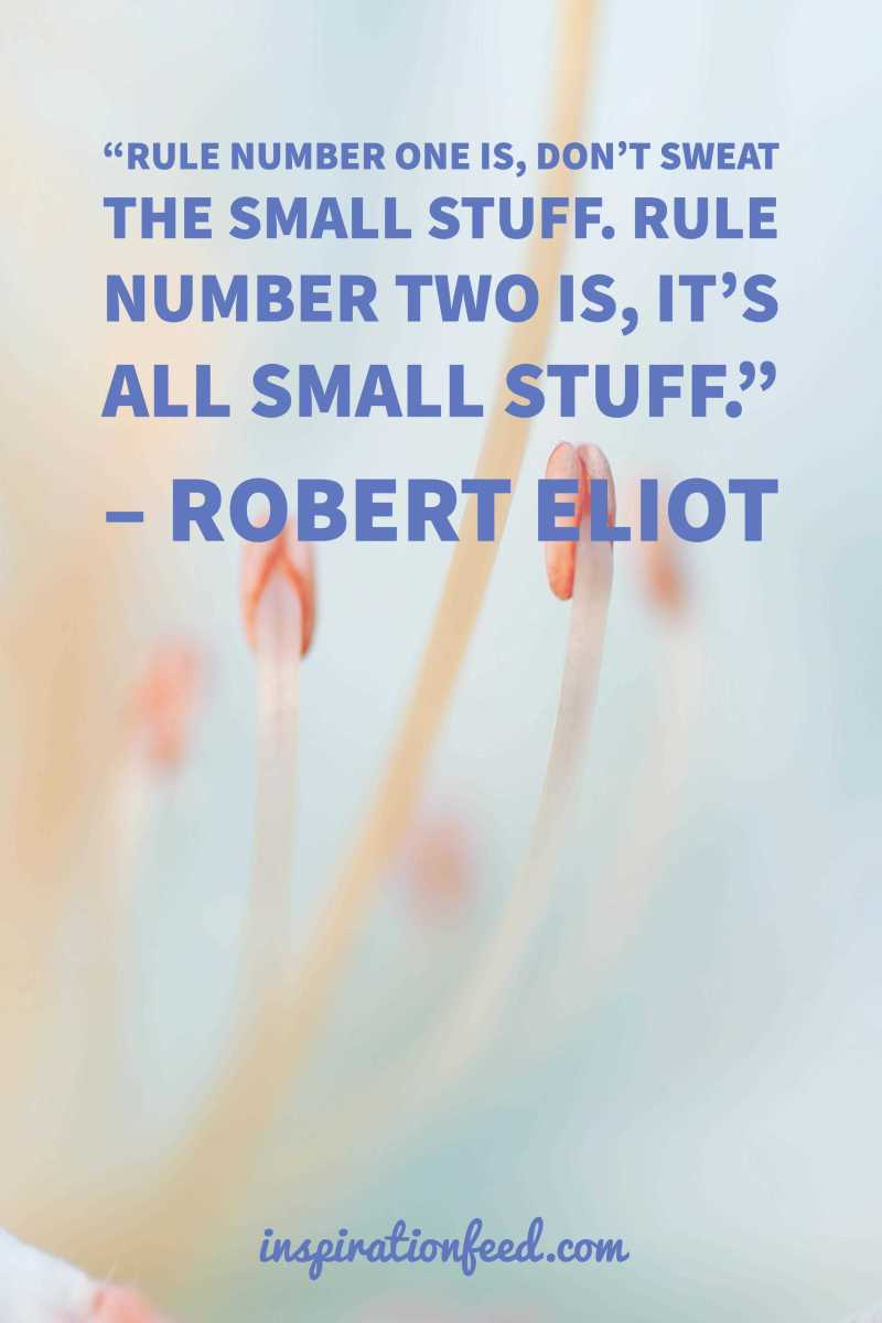 small-stuff-quote-by-robert-eliot