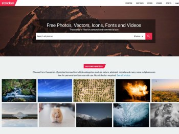 Download Free Vectors, Photos, Icons, Fonts and Videos