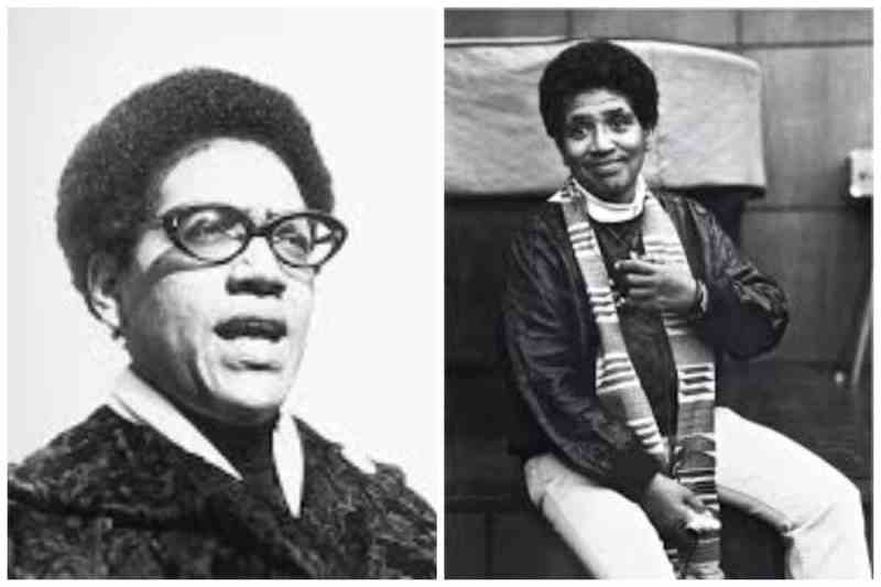 Audre Lorde Collage