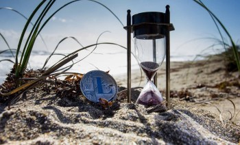 Litecoin by the Beach