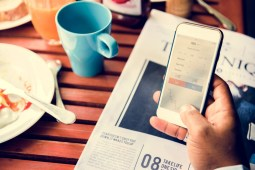 Top 5 Best Forex Brokers for Beginners