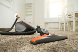 Let's see some best canister vacuums for carpet and issues around them