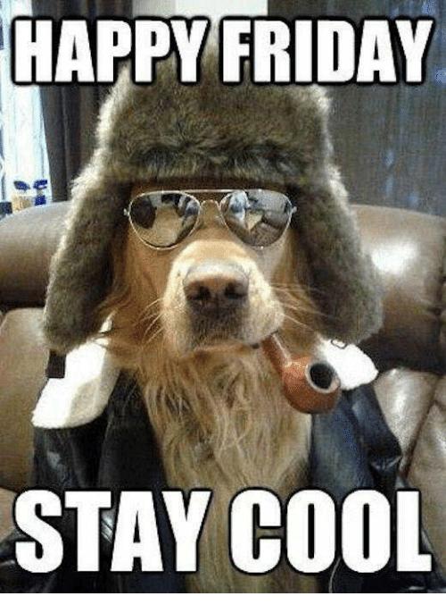 Happy Friday Meme : happy, friday, Funny, Friday, Memes, Kickoff, Long-Awaited, Weekend, Inspirationfeed
