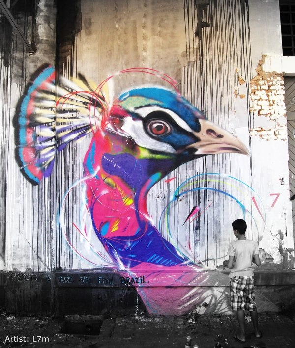 Graffiti Birds Brazilian Artist L7m Inspirationfeed